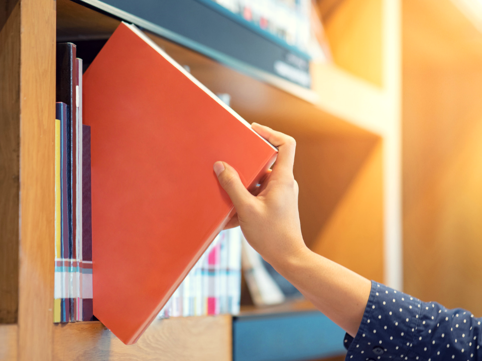 Library Genrefication Advantages and Drawbacks